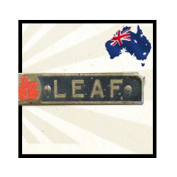 MAPLE LEAF CLASSIC | Windscreens Side windows Back glass